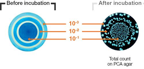Circle plater mode part 1